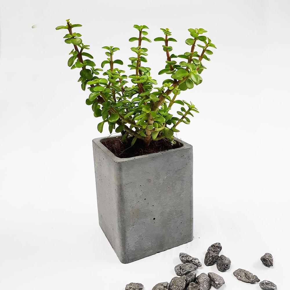 Concrete Table Planter 02,Gomaads, Exterior Decor Elements ,Pots & Planters